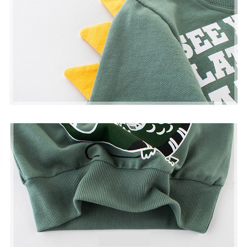Boy's Daily Geometric Sweatshirt and Hood, Polyester Spring Long Sleeve Basic Blue Pool Green Gray Clover