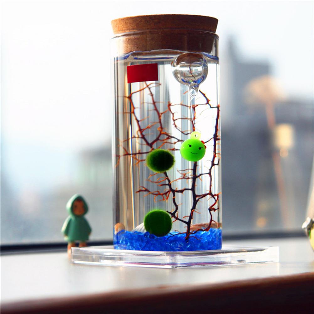 12cm Glass Bottle Jar Hydroponic Terrarium Container Light LED Cork Stopper
